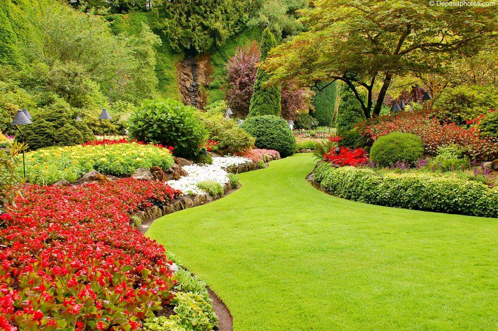Gartengestaltung Feng Shui Welle